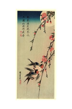 gekka-momo-ni-tsubakura