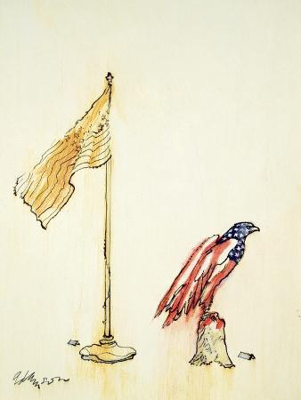 george-adamson-american-eagle-acquires-us-flag-colouration-1985