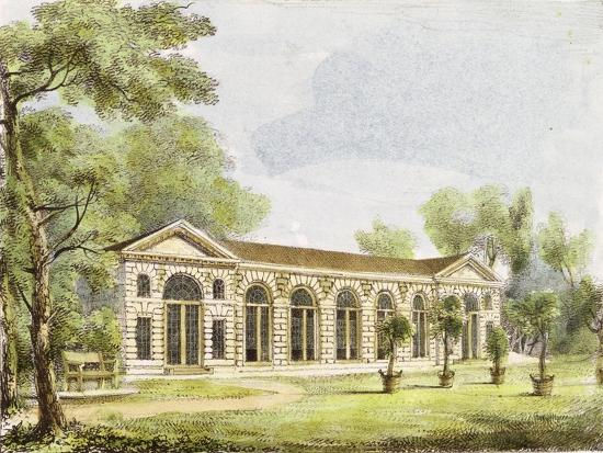 george-ernest-papendiek-orangery-kew-gardens-plate-11-from-kew-gardens-a-series-of-twenty-four-drawings-on-stone