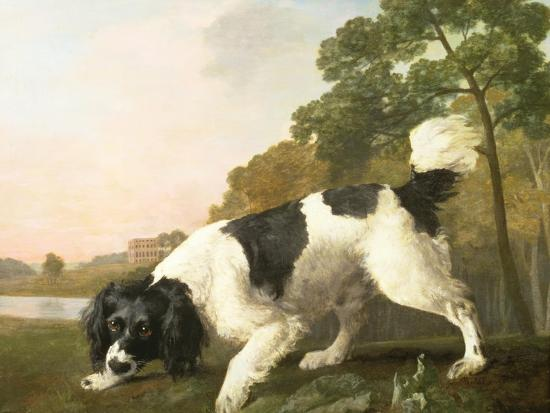 george-stubbs-a-spaniel-in-a-landscape-1771