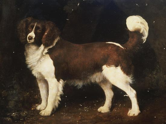 george-stubbs-a-spaniel-in-a-landscape-1784