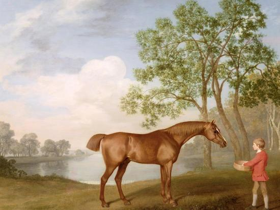george-stubbs-pumpkin-with-a-stable-lad-1774-oil-on-panel