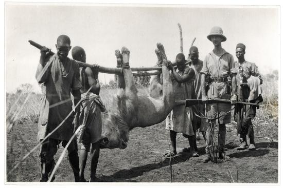 georges-marie-haardt-lion-at-bahr-el-ghazal-am-dafok-1925