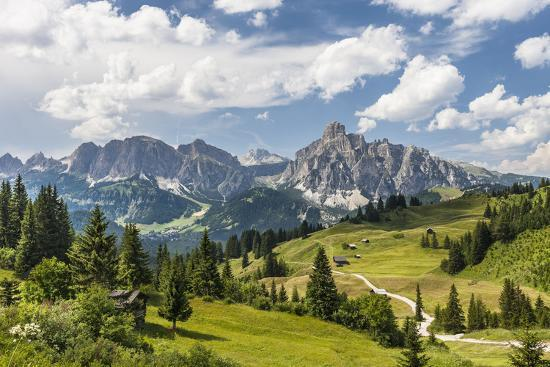 gerhard-wild-alp-close-corvara-puezgruppe-mountain-range-behind-the-dolomites-south-tyrol-italy-europe