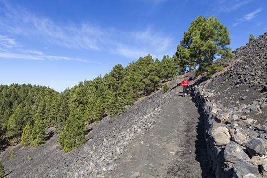 gerhard-wild-woman-hiking-in-the-volcano-landscape-of-the-nature-reserve-cumbre-vieja-la-palma-spain