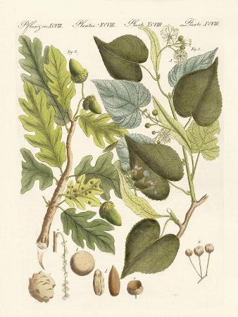 german-woodtrees