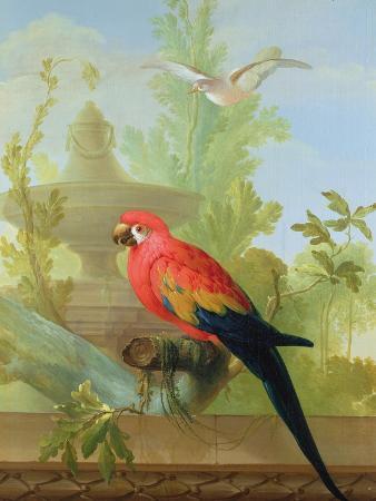 gerrit-van-den-heuvel-a-macaw-and-a-dove-in-an-ornamental-garden-1772