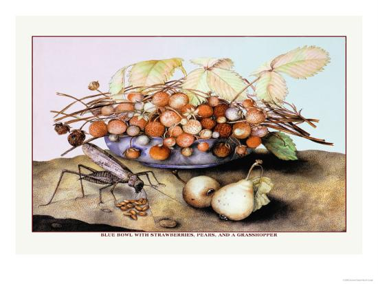 giovanna-garzoni-bowl-of-strawberries-pears-and-a-grasshopper