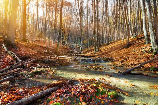 givaga-wild-mountain-river-in-the-autumn-forest