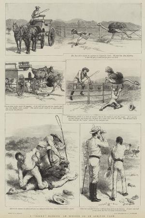 godefroy-durand-a-rogue-ostrich-an-episode-on-an-african-farm