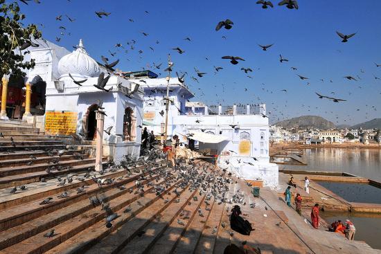 godong-ghats-at-holy-pushkar-lake-and-old-rajput-palaces-pushkar-rajasthan-india-asia