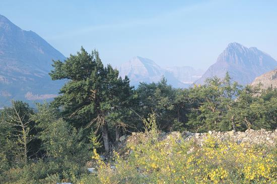 gordon-semmens-glacier-p