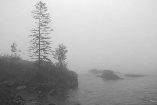 gordon-semmens-north-shore-1