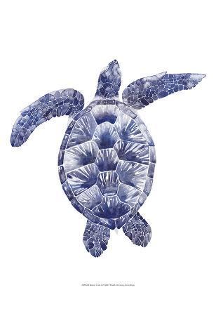 grace-popp-marine-turtle-ii