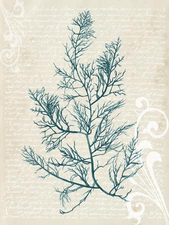 grace-popp-teal-seaweed-i