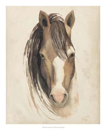 grace-popp-watercolor-animal-study-v