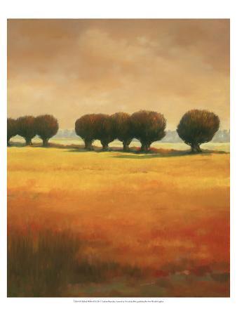 graham-reynolds-pollard-willow-ii