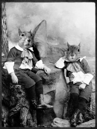 grand-ole-bestiary-the-squirrelton-twins