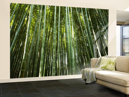 greg-elms-bamboo-forest-arashiyama-sagano-district