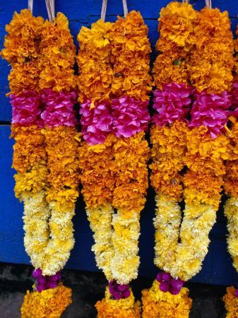 greg-elms-floral-garland-tamil-nadu-india