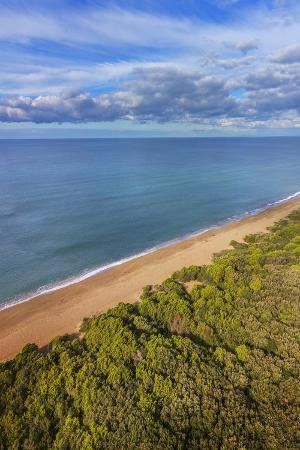 guido-cozzi-pinewood-along-the-coast