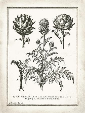 gwendolyn-babbitt-french-artichokes