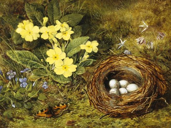h-barnard-grey-primroses-with-a-bird-s-nest