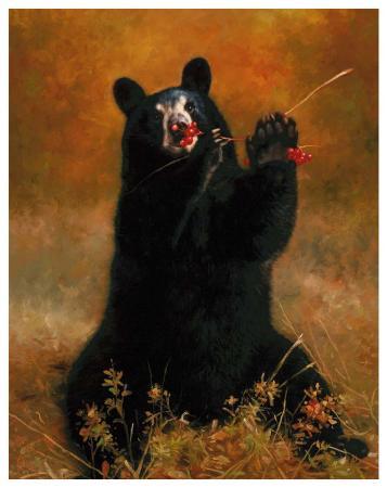 h-kendrick-black-bear-with-berries