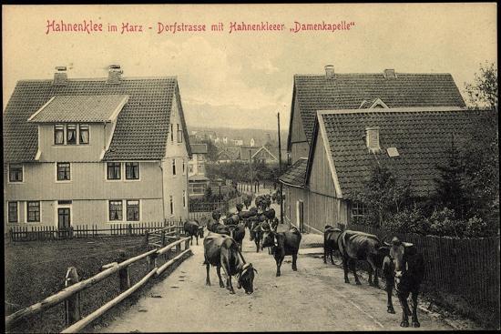 hahnenklee-bockswiese-goslar-am-harz-dorfstrasse-mit-damenkapelle-kuehe