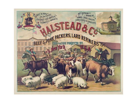 halstead-and-co-beef-and-pork-packers-lard-refiners-and-co