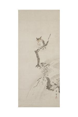 hanabusa-itcho-one-owl-perched-in-a-tree-c-1710