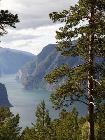 hans-peter-merten-aurlandsfjorden-near-aurlandsvangen-sogn-og-fjordane-norway-scandinavia-europe