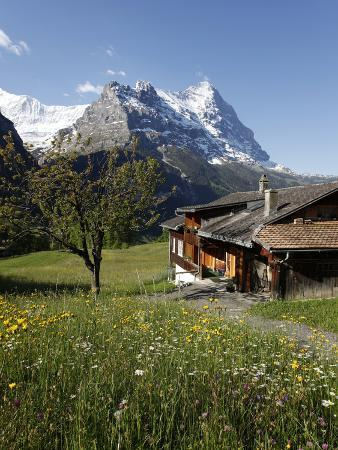hans-peter-merten-view-from-grindelwald-to-eiger-bernese-oberland-swiss-alps-switzerland-europe