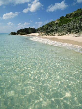 harding-robert-whale-beach-bermuda-central-america-mid-atlantic
