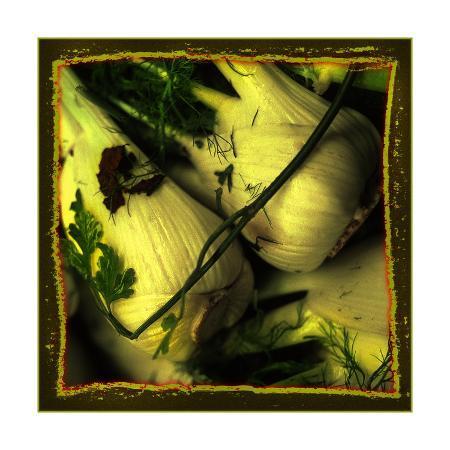 harold-silverman-anise