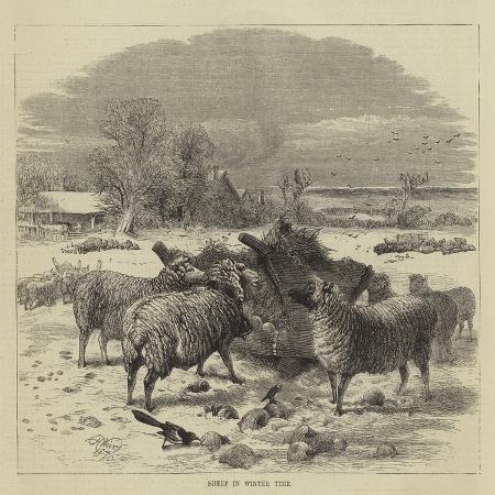 harrison-william-weir-sheep-in-winter-time
