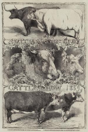harrison-william-weir-smithfield-club-cattle-show-1859