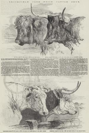 harrison-william-weir-smithfield-club-prize-cattle-show