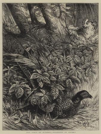 harrison-william-weir-the-first-of-october-pheasant-in-covert