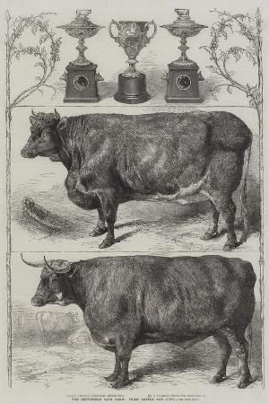 harrison-william-weir-the-smithfield-club-cattle-show-prize-cattle-and-cups