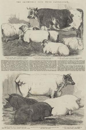 harrison-william-weir-the-smithfield-club-prize-cattle-show