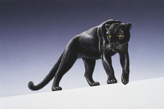 harro-maass-black-panther