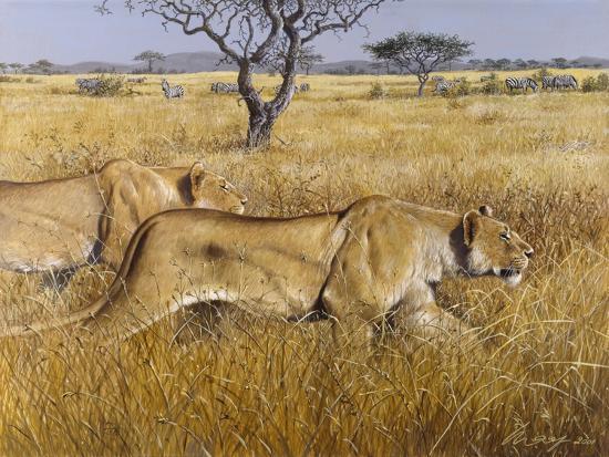 harro-maass-hunting-lions