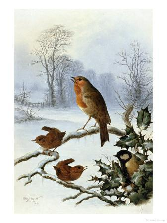 harry-bright-christmas-robin-and-friends