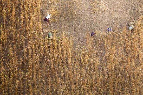 harry-marx-aerial-view-of-farmer-working-on-a-field-in-bagan-myanmar
