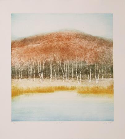 harvey-kidder-birch-grove
