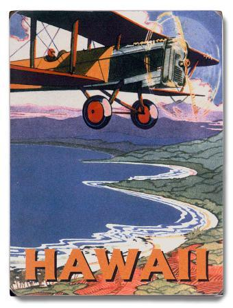 hawaii-sight-seeing-by-air