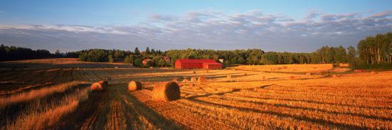 hay-bales-in-a-field-flen-sodermanland-county-sweden