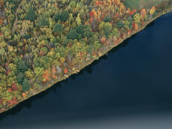 heather-perry-an-aerial-view-of-a-forest-in-autumn-colors-near-a-body-of-water