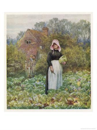 helen-allingham-picking-vegetables-in-an-english-vegetable-garden